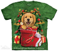 Golden Stocking Childrens Xmas T-Shirt - Size Youth Large