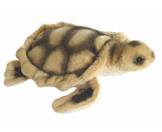 Cute Little Turtle Soft Plush Toy (14cm)