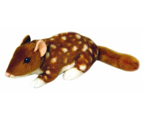 Australian Quoll Soft Plush Toy (Small 20cm)