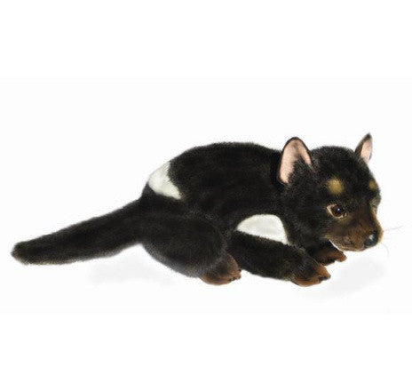 Tasmanian Devil Soft Plush Toy (Diego  24cm)