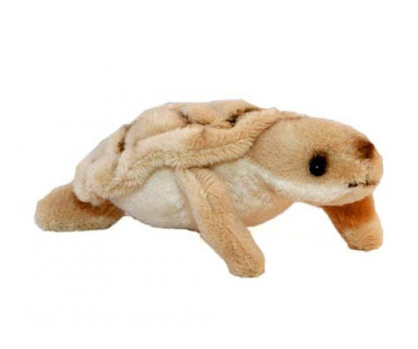 Turtle Mini Plush Toy (11cm)