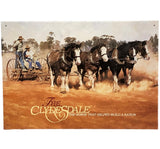 The Clydesdales Horse Tin Sign (50cm x 35cm)