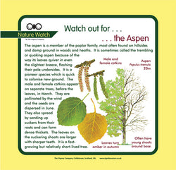'Aspen' Nature Watch Panel