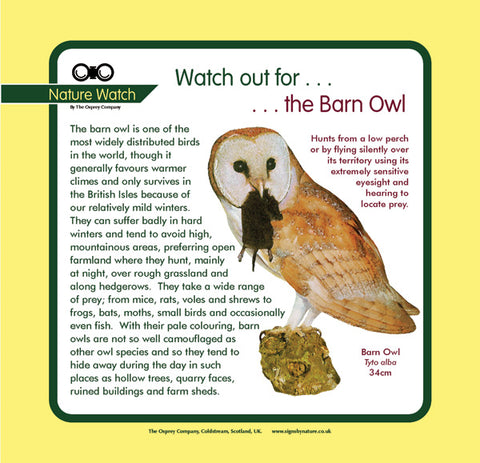 'Barn owl' Nature Watch Panel