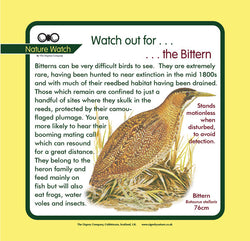 'Bittern' Nature Watch Panel