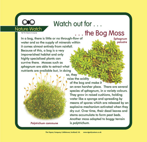 'Bog moss' Nature Watch Panel