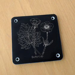 'Buttercup' rubbing plaque