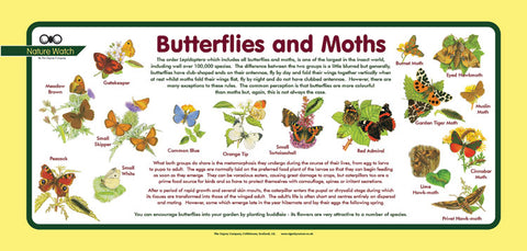 'Butterflies and Moths' Nature Watch Plus Panel