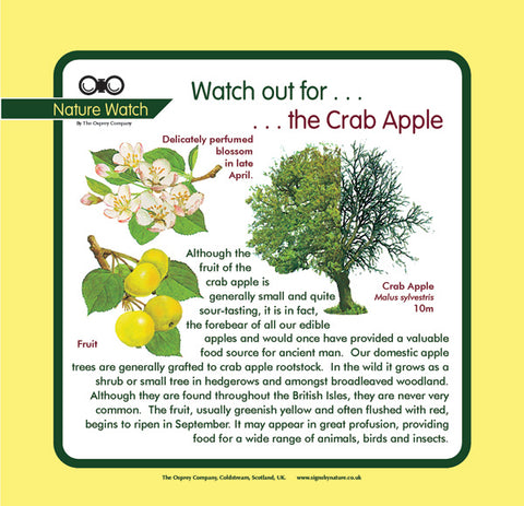 'Crab apple' Nature Watch Panel