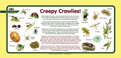 'Creepy crawlies' Nature Watch Plus Panel