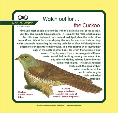 'Cuckoo' Nature Watch Panel
