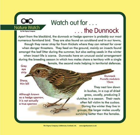 'Dunnock' Nature Watch Panel
