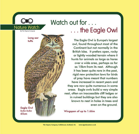 'Eagle owl' Nature Watch Panel