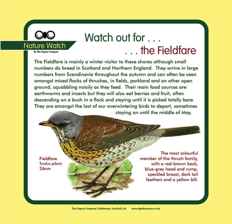 'Fieldfare' Nature Watch Panel
