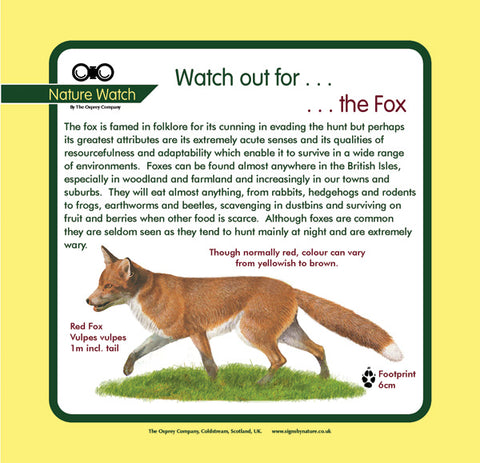 'Fox' Nature Watch Panel