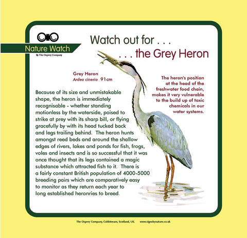 'Grey heron' Nature Watch Panel