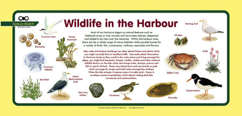 'Harbour' Nature Watch Plus Panel