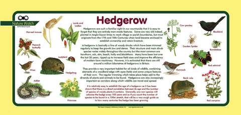 'Hedgerow' Nature Watch Plus Panel
