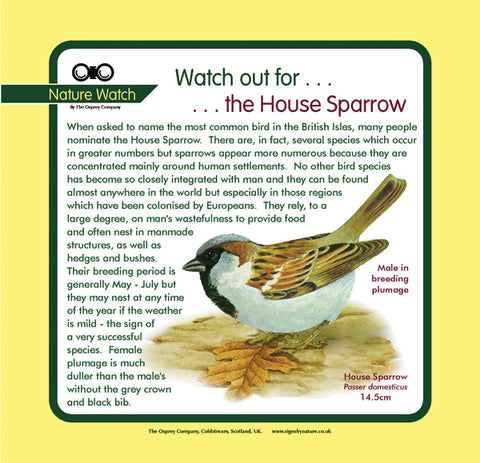 'House sparrow' Nature Watch Panel