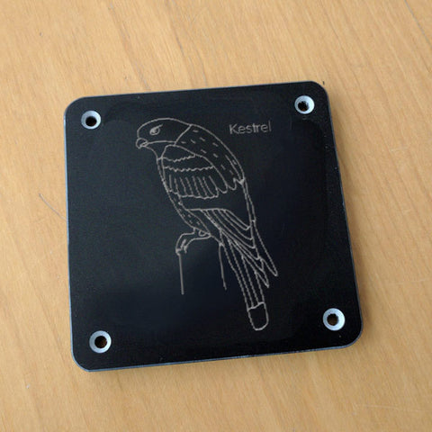 'Kestrel' rubbing plaque