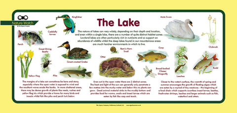 'Lake' Nature Watch Plus Panel