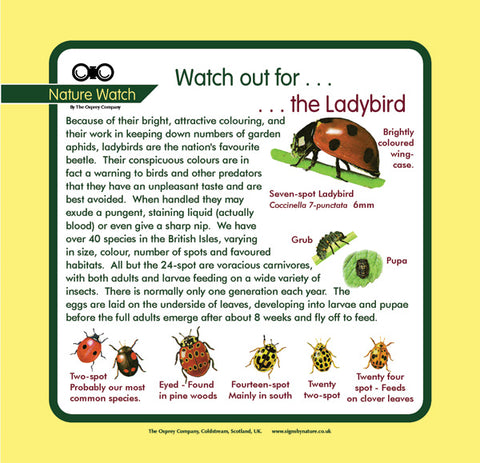 'Ladybird' Nature Watch Panel