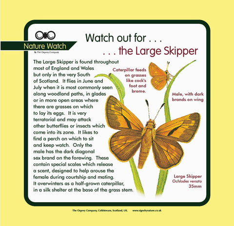 'Large skipper' Nature Watch Panel