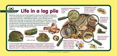 'Logpile' Nature Watch Plus Panel