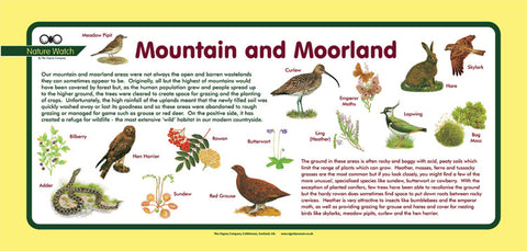 'Mountain and moorland' Nature Watch Plus Panel
