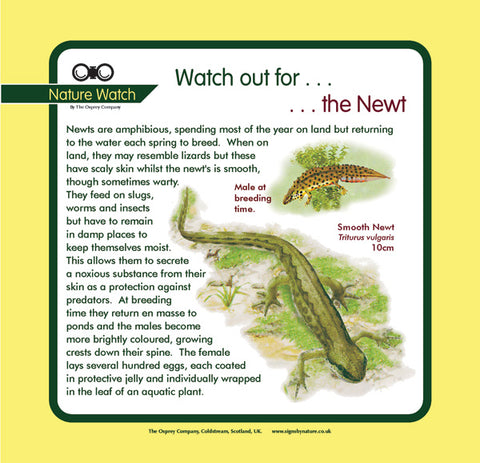'Newt' Nature Watch Panel