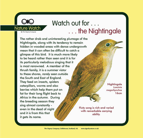 'Nightingale' Nature Watch Panel