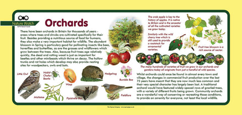 'Orchards' Nature Watch Plus Panel