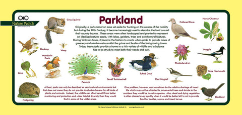 'Parkland' Nature Watch Plus Panel