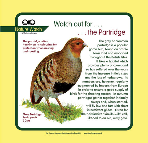 'Partridge' Nature Watch Panel
