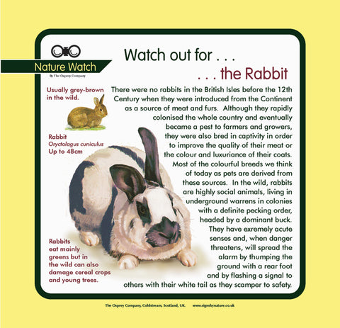 'Pet rabbit' Nature Watch Panel