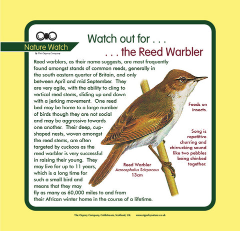 'Reed warbler' Nature Watch Panel