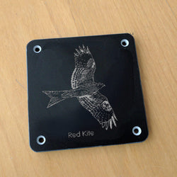 'Red kite' rubbing plaque