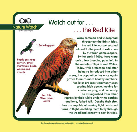 'Red kite' Nature Watch Panel