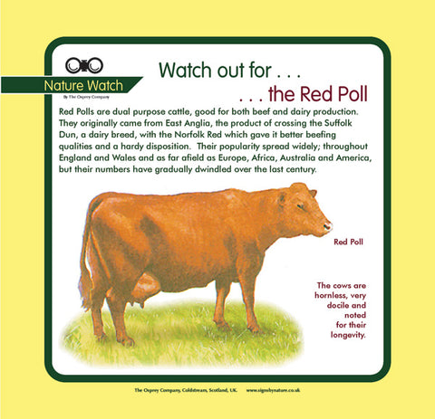 'Red poll' Nature Watch Panel