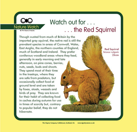 'Red squirrel' Nature Watch Panel