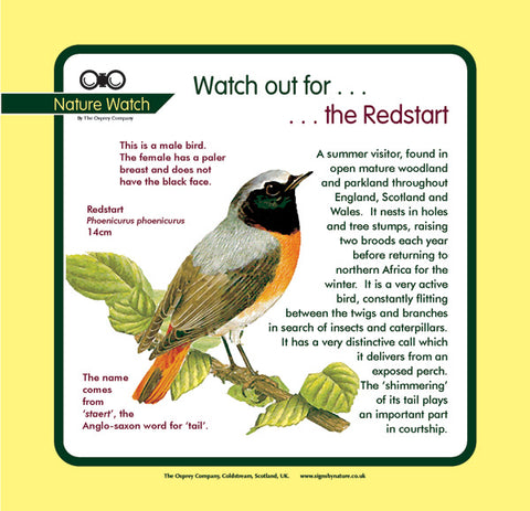 'Redstart' Nature Watch Panel
