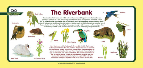 'Riverbank' Nature Watch Plus Panel