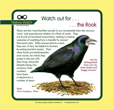 'Rook' Nature Watch Panel