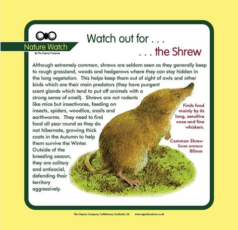 'Shrew' Nature Watch Panel