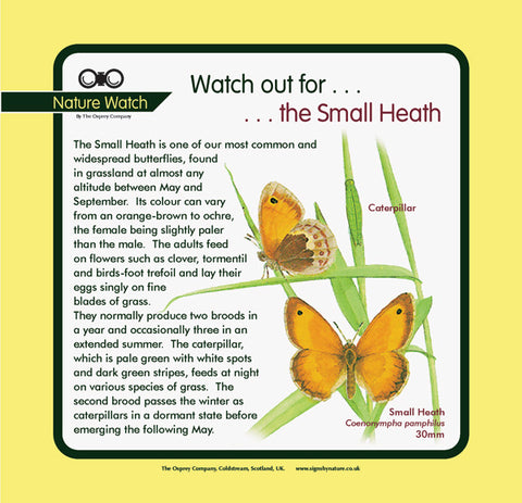 'Small heath' Nature Watch Panel