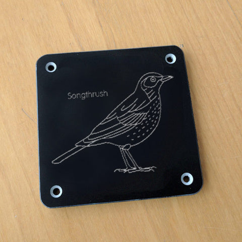 'Songthrush' rubbing plaque