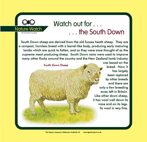 'South Down' Nature Watch Panel