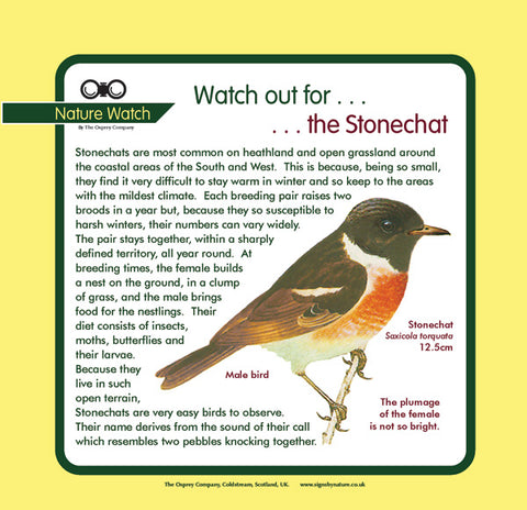 'Stonechat' Nature Watch Panel