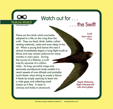 'Swift' Nature Watch Panel