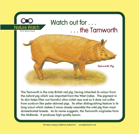 'Tamworth' Nature Watch Panel